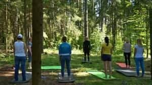 Мастер-класс по йоге во время корпоративного выезда на природу
