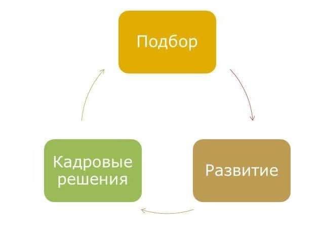 области применения оценки персонала