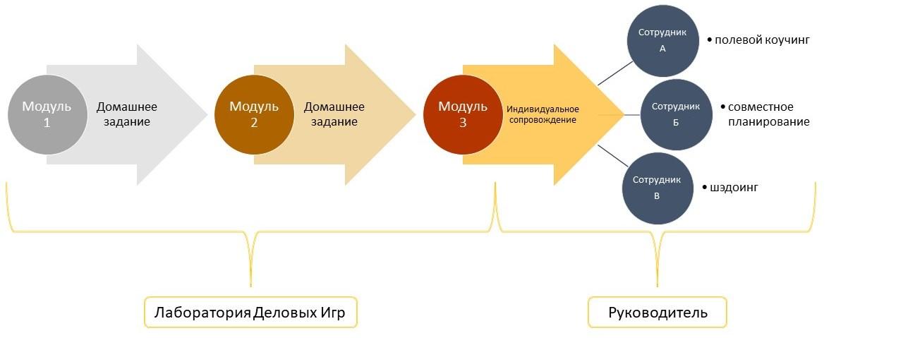 Процесс обучения и развития сотрудника после онлайн тренинга